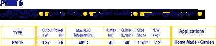 IDS PM 16